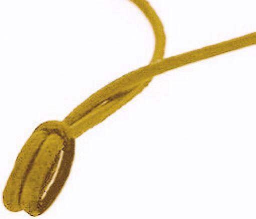 Umhängeband aus Leder, hell 1,6 mm