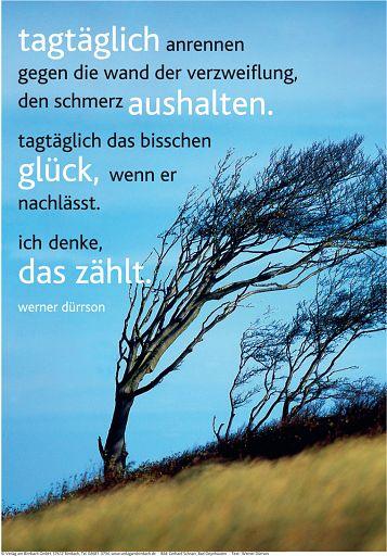 "Schaukastenposter 33 ""Sturm"""
